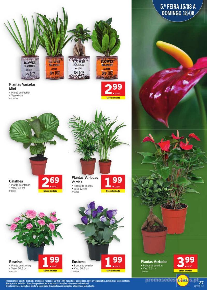 Folheto Lidl Bio Organic - 12 de Agosto a 18 de Agosto - página 27